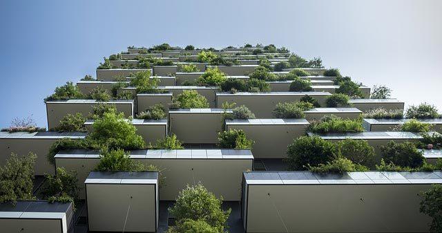 foto de balcones con plantas